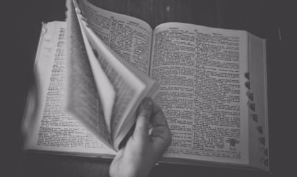 20887_diccionario-ultima-palabra