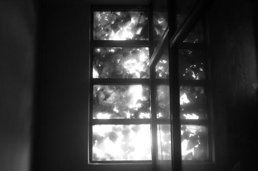 ventana fea